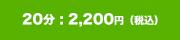 20分 : 2,000円